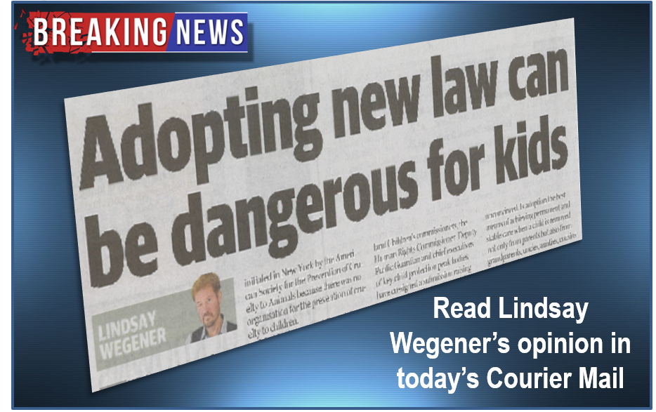 Adopting new law can be dangerous for kids